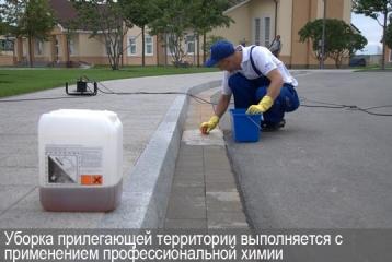 Уборка прилегающей территории выполняется с применением профессиональной химии